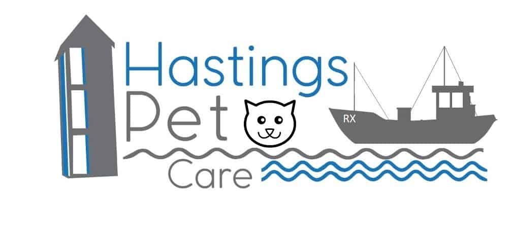 Cat Feeding and Sitting Services - Hastings and St Leonards