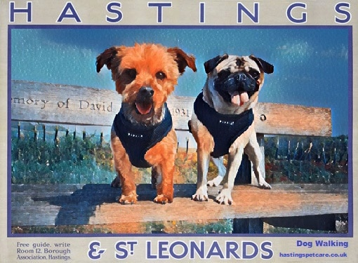 Dog Walking Posters Dog Walkers of Hastings Fairlight St Leonards - Charlie and Alfie