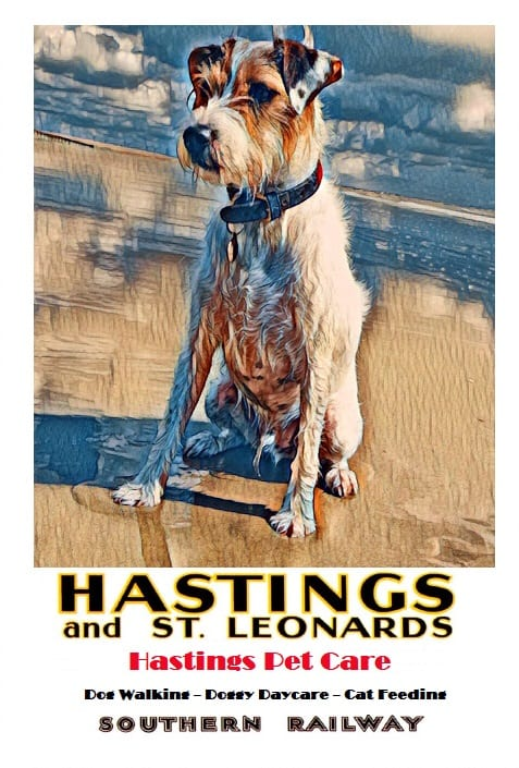 Dog Walking - Hastings Pet Care - Dog Walkers St Leonards - Fairlight