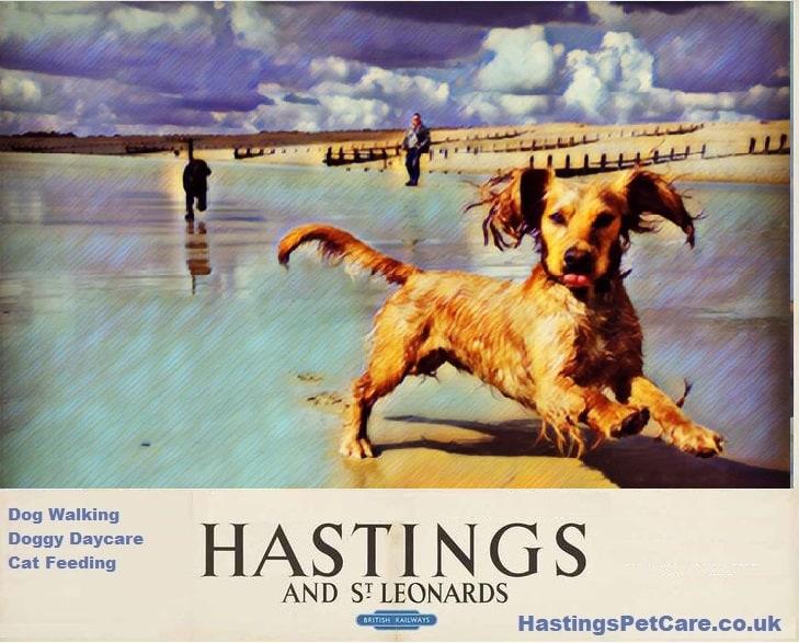 Fairlight Hastings St Leonards Bexhill dog Walkers Milton