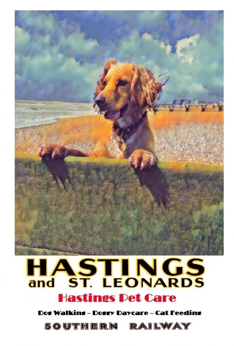 Milton - St Leonards and Hastings - Dog Walking Services Dogs