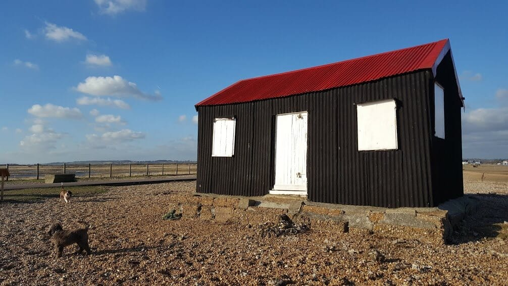 Rye Harbour Nature Reserve - Dog Walkers - Hastings Pet Care