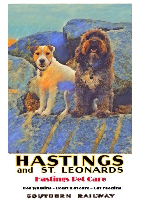 Pad n George - Dog Walking Services - Hastings Pet Care - St Leonards Fairlight Walkers dogs