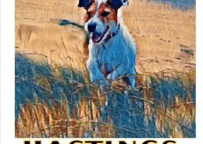 George Dog Walker Hastings