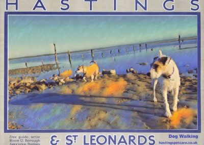 Winchelsea Beach Dog Walkers Hastings Pet Care St Leonards and Fairlight