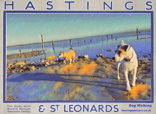 Dog Walking Posters Winchelsea Beach Dog Walkers Hastings Pet Care St Leonards and Fairlight
