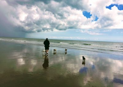 With the doggies at Winchelsea Beach - Dog Walkers - Hastings Pet Care - St Leonards Fairlight